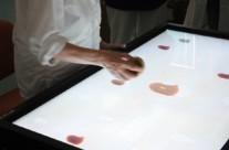 Multi-user interactive table for neurocognitive and neuromotor rehabilitation